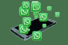 Contact50 Udenhout Whatsapp